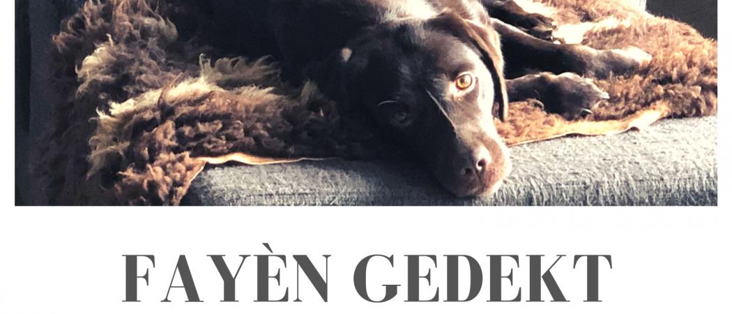 Verwacht | Pups Fayèn en Binq